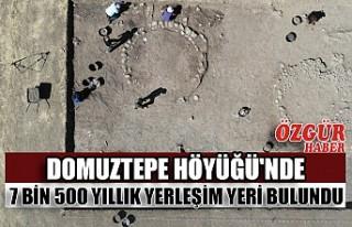Domuztepe Höyüğü'nde 7 Bin 500 Yıllık Yerleşim...