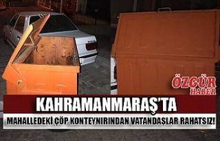 Kahramanmaraş'ta Mahalledeki Çöp Konteynırından...