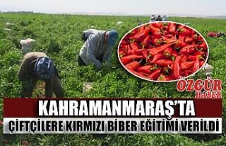 Kahramanmaraş'ta Çiftçilere Kırmızı Biber...