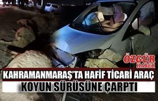 Kahramanmaraş'ta Hafif Ticari Araç Koyun Sürüsüne...