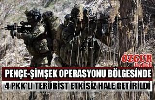 Pençe-Şimşek Operasyonu Bölgesinde 4 PKK'lı...