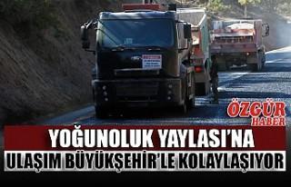 Yoğunoluk Yaylası'na Ulaşım Büyükşehir'le...