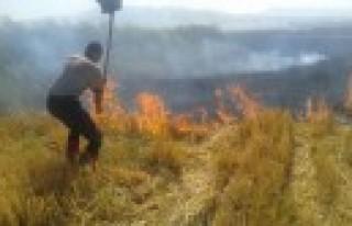 Anız Yangınları Çevreyi Tehdit Ediyor
