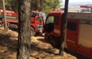Büyükşehir İtfaiyesi Grupları, Orman Yangını...