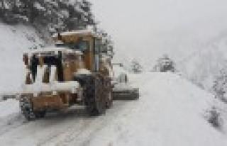 Büyükşehir Kar Temizleme Çalışmalarına Başladı