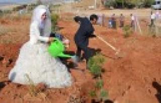 Türkoğlu'nda Toplu Nikah ve Fidan Dikimi
