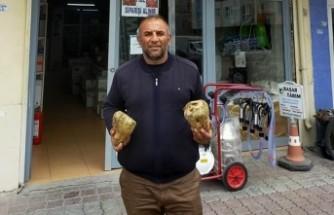 Afşinli Çiftçi, Şeker Pancarında Polar Rekoru Kırdı