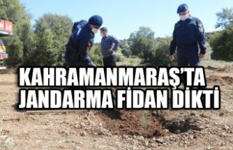Kahramanmaraş'ta  Jandarma Fidan Dikti
