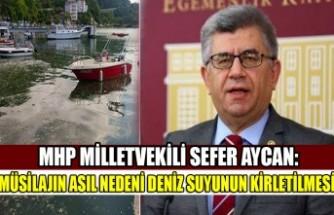 MHP Milletvekili Sefer Aycan: Müsilajın Asıl Nedeni Deniz Suyunun Kirletilmesi