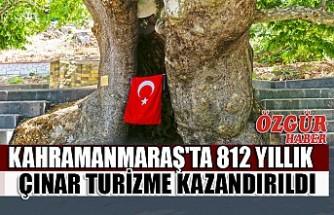 Kahramanmaraş'ta 812 Yıllık Çınar Turizme Kazandırıldı