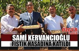 Sami Kervancıoğlu Fıstık Hasadına Katıldı