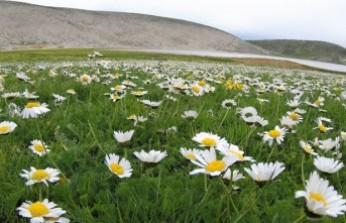 Ahir Dağı Zirvesindeki Göller Dikkat Çekiyor