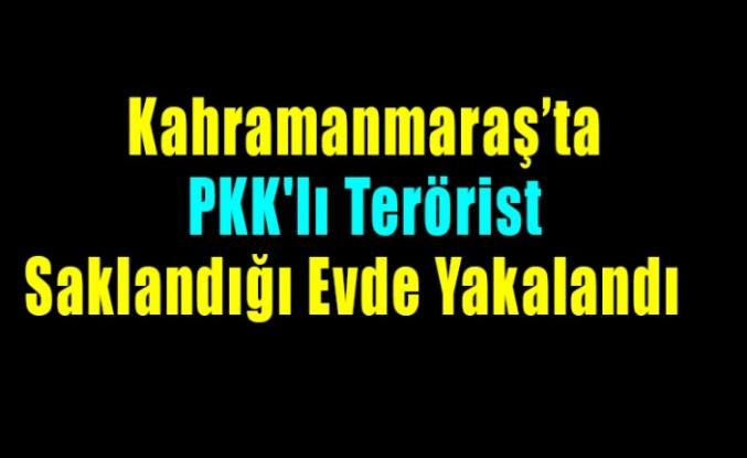 PKK'lı Terörist Saklandığı Evde Yakalandı