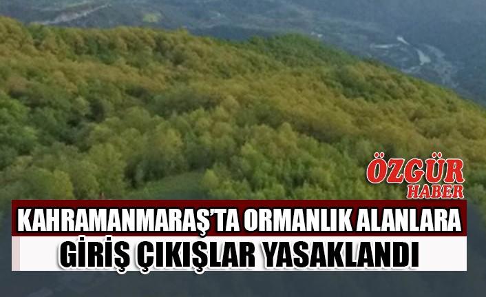 Kahramanmaraş'ta Ormanlık Alanlara Giriş Çıkışlar Yasaklandı